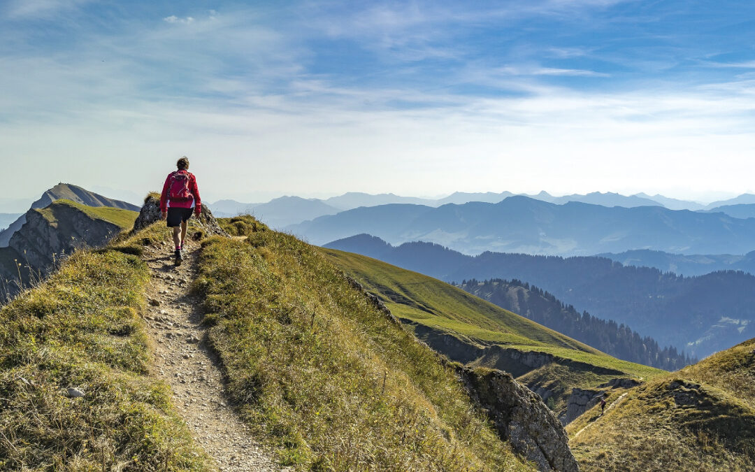 Navigating Wellness in the Age of COVID-19